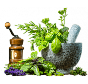 Diploma in Ayurvedic Diet and Lifestyle counselling